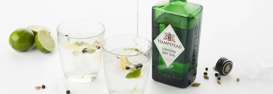 Cocktail au gin aux agrumes