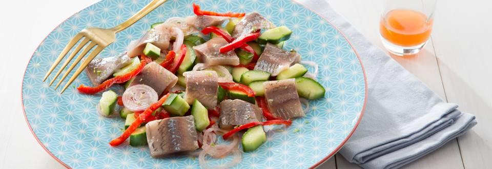 Salade de concombre aux maatjes